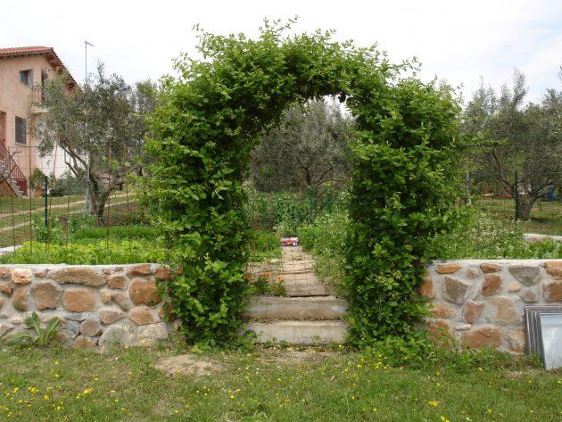 σχέδια εισόδου κήπου3
