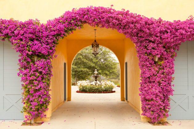 σχέδια εισόδου κήπου5