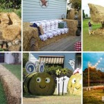 Bales-Of-Hay-Projects