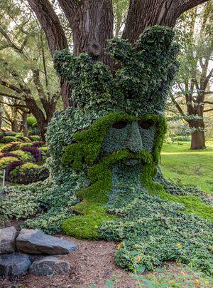 Μαγικές συνθέσεις κήπου1