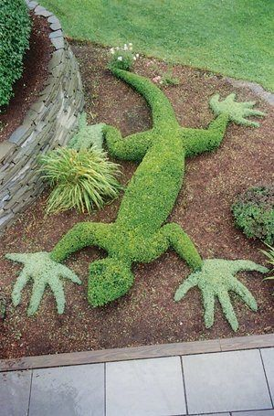 Μαγικές συνθέσεις κήπου16