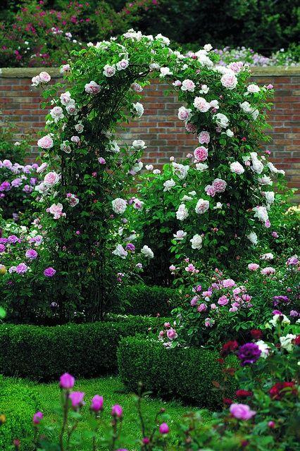 καμάρες κήπου15