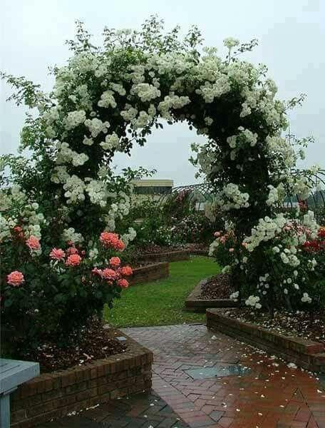 καμάρες κήπου2