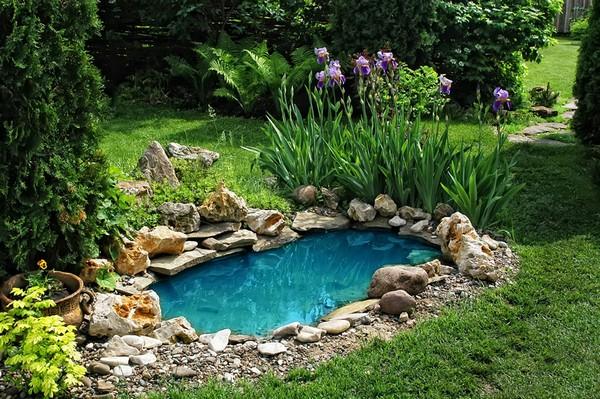 μικρές λιμνούλες στον κήπο19