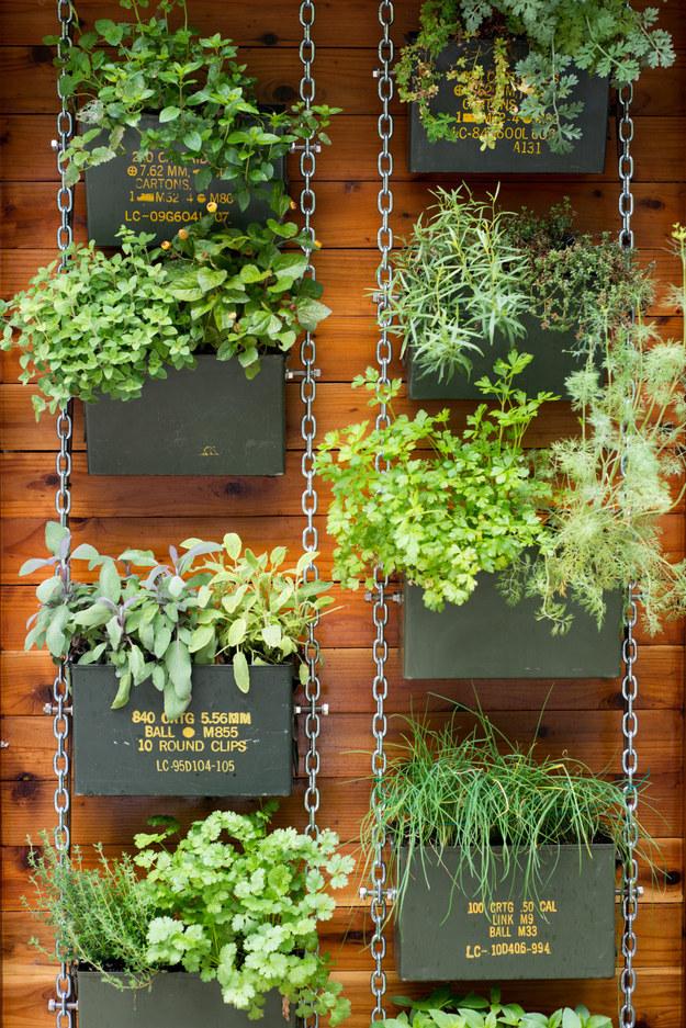 κάθετες ιδέες κηπουρικής20