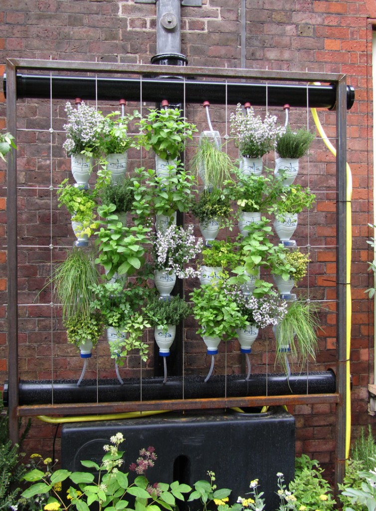 κάθετες ιδέες κηπουρικής26