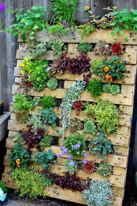 κάθετες ιδέες κηπουρικής27