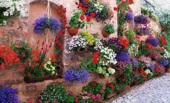 κάθετες ιδέες κηπουρικής31