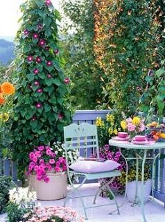 κάθετες ιδέες κηπουρικής42