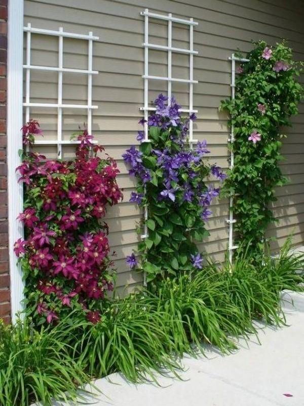 κάθετες ιδέες κηπουρικής44