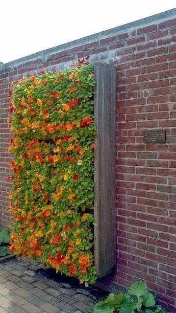 κάθετες ιδέες κηπουρικής5