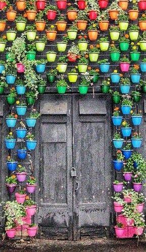 κάθετες ιδέες κηπουρικής9