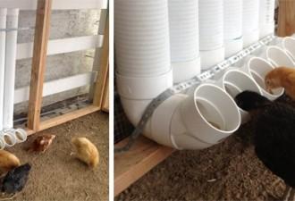 Ταίστε τις κότες σας με στυλ - Ταΐστρες για τα κοτόπουλα με σωλήνες PVC